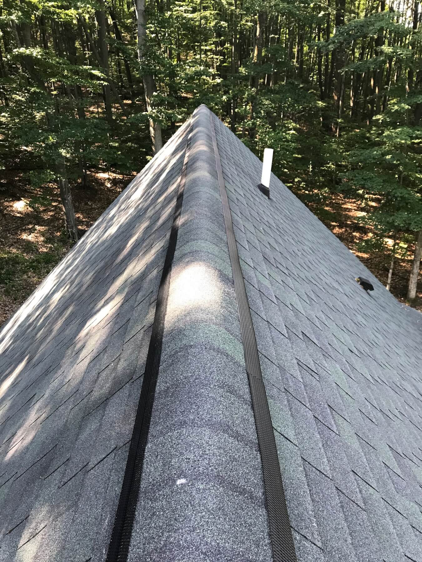 Ridge Vent Exlusion Hogarth S Pest Control In Northern